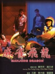麻雀飞龙国语版