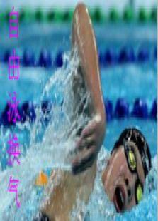 自由泳换气[0]
