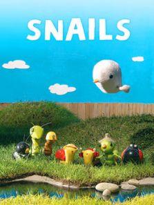 小蜗牛当家