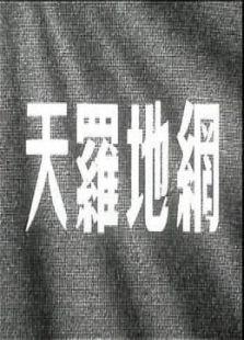 天罗地网(剧情片)