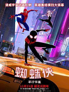 蜘蛛侠平行宇宙_完整版