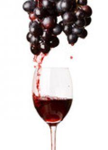 葡萄酒鉴赏家第一季