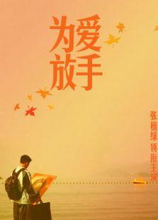 为爱放手(2011)
