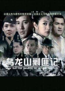 新乌龙山剿匪记(国产剧)
