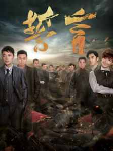 誓言DVD版(国产剧)