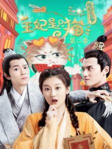 报告王爷王妃是只猫第二季