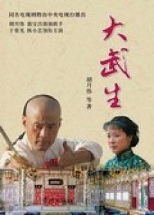 大武生电视剧