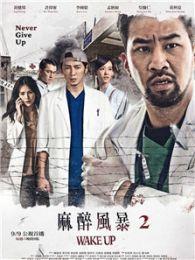 麻醉風暴2(2017)