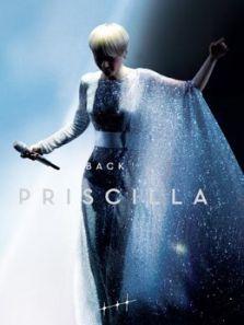 陈慧娴-BacktoPricilla30周年演唱会完整版