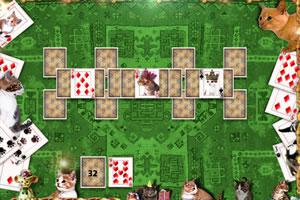 小猫咪扑克