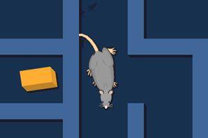 老鼠走迷宫龙8娱乐国际