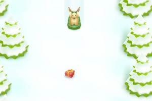 宠物雪撬龙8娱乐国际