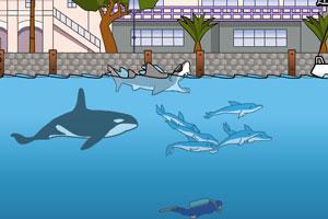 鲨鱼的复仇中文版龙8娱乐国际
