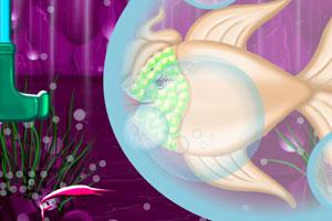 海底的鱼姑娘