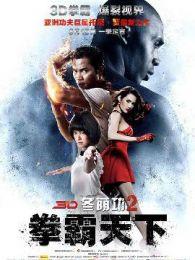 冬荫功2:拳霸天下(国语版)