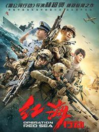 红海行动(2018)