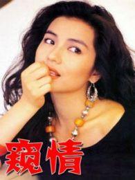 窥情(1993)