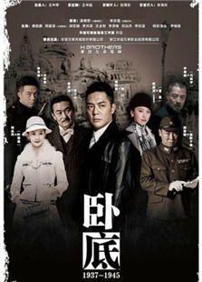 臥底(2015版)