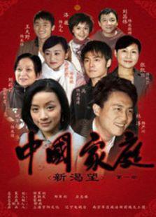 中国家庭之新渴望(国产剧)